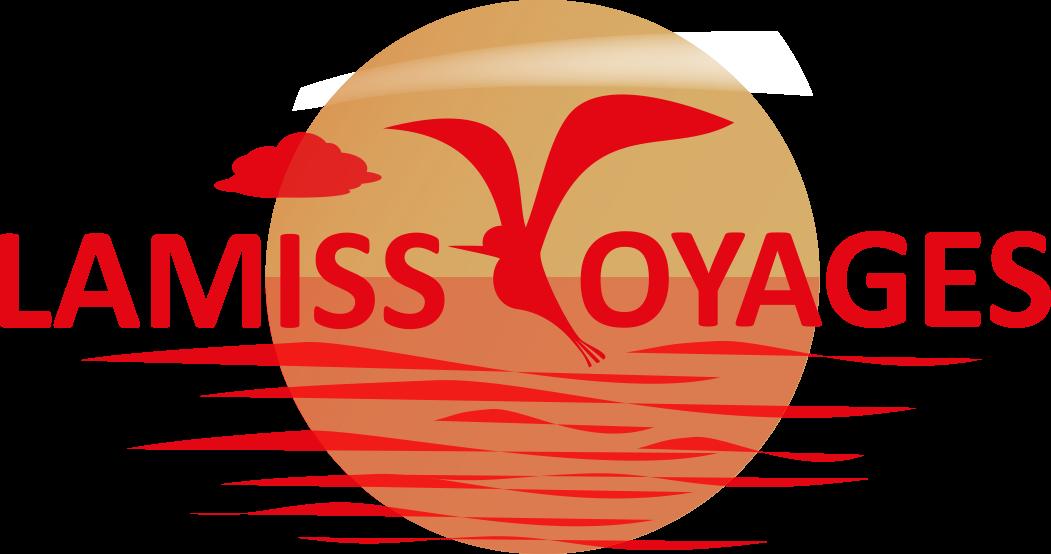 Lamiss Voyages Agence De Voyages Réservation De Billets